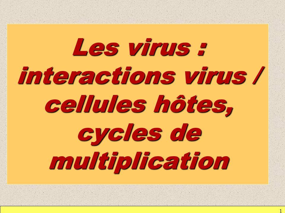 1 Les virus : interactions virus / cellules hôtes, cycles de multiplication