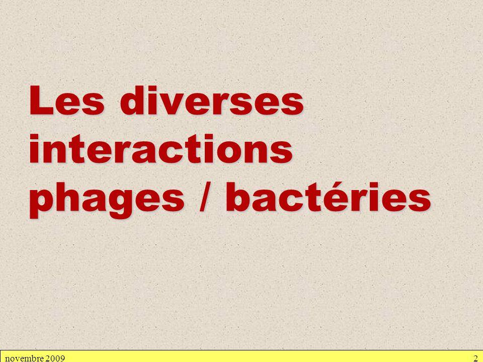 2-1- Etude expérimentale Le virus I est à létat de prophage, seul son acide nucléique se trouve dans la bactérie intégré à lADN bactérien LADN du phage intégré : - se réplique en même temps que celui de la bactérie - a certains gènes transcrits et traduits.