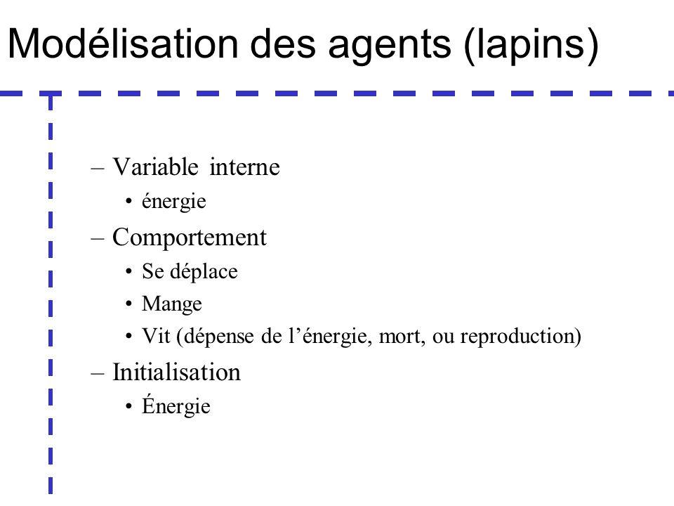Modélisation des agents (lapins) –Variable interne énergie –Comportement Se déplace Mange Vit (dépense de lénergie, mort, ou reproduction) –Initialisation Énergie