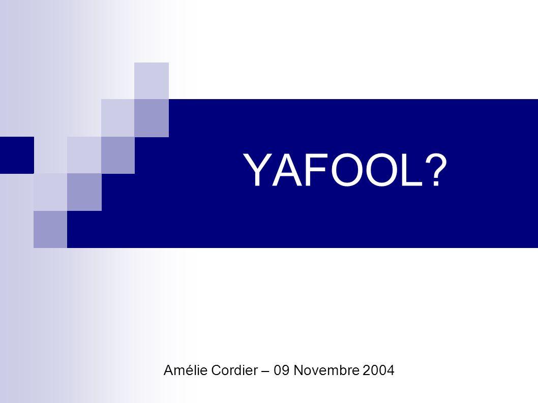 YAFOOL .- Amélie Cordier2 09 Novembre 2004 Plan de la présentation Yafool.