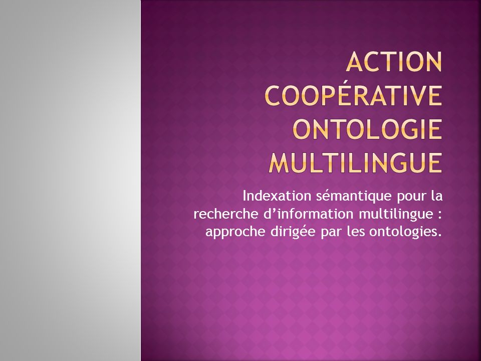 Web = un corpus multilingue Enrichissement dOntologie Indexation / Annotation Algorithme de Recherche dInformation Tests / Evaluation