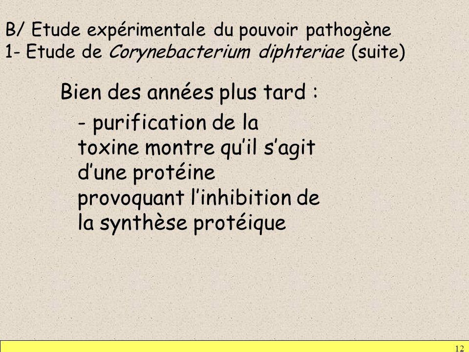 B/ Etude expérimentale du pouvoir pathogène 1- Etude de Corynebacterium diphteriae (suite) Bien des années plus tard : - purification de la toxine mon