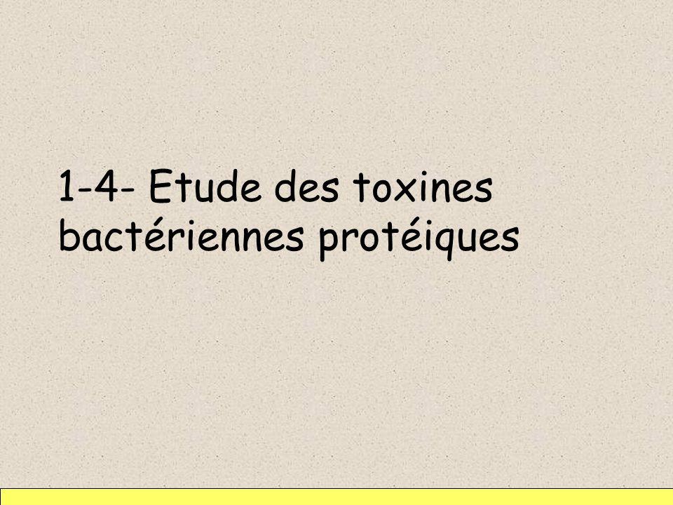 1-4- Etude des toxines bactériennes protéiques