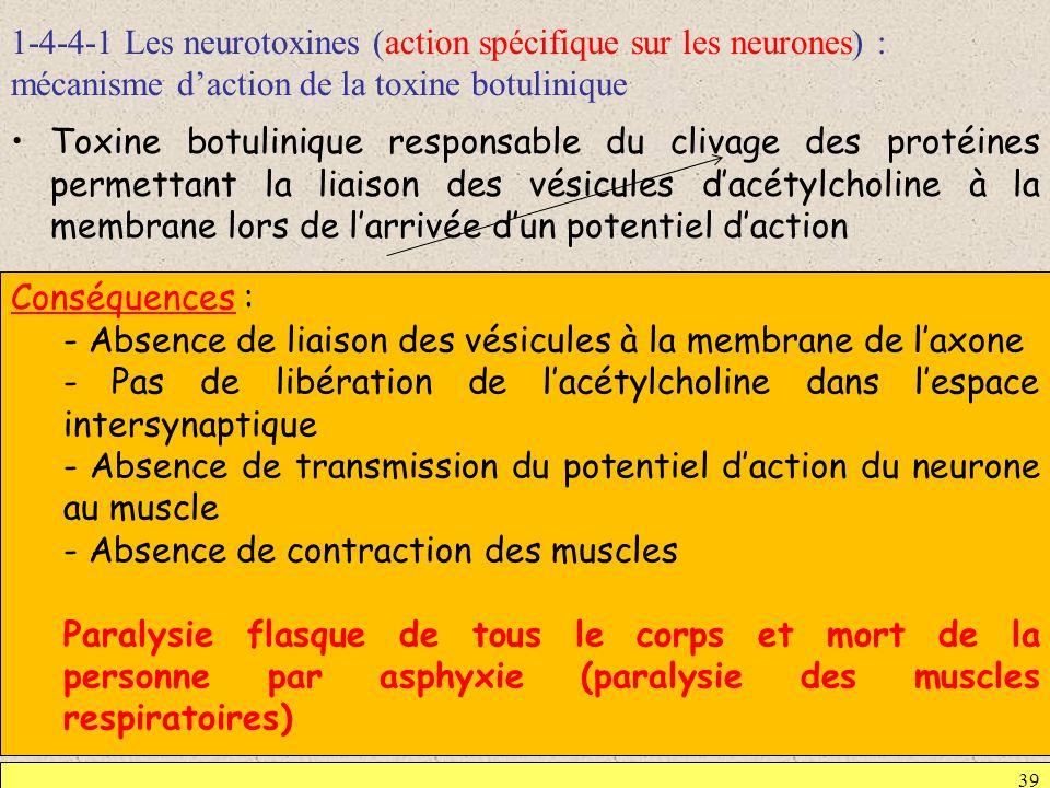 1-4-4-1 Les neurotoxines (action spécifique sur les neurones) : mécanisme daction de la toxine botulinique 39 Toxine botulinique responsable du clivag