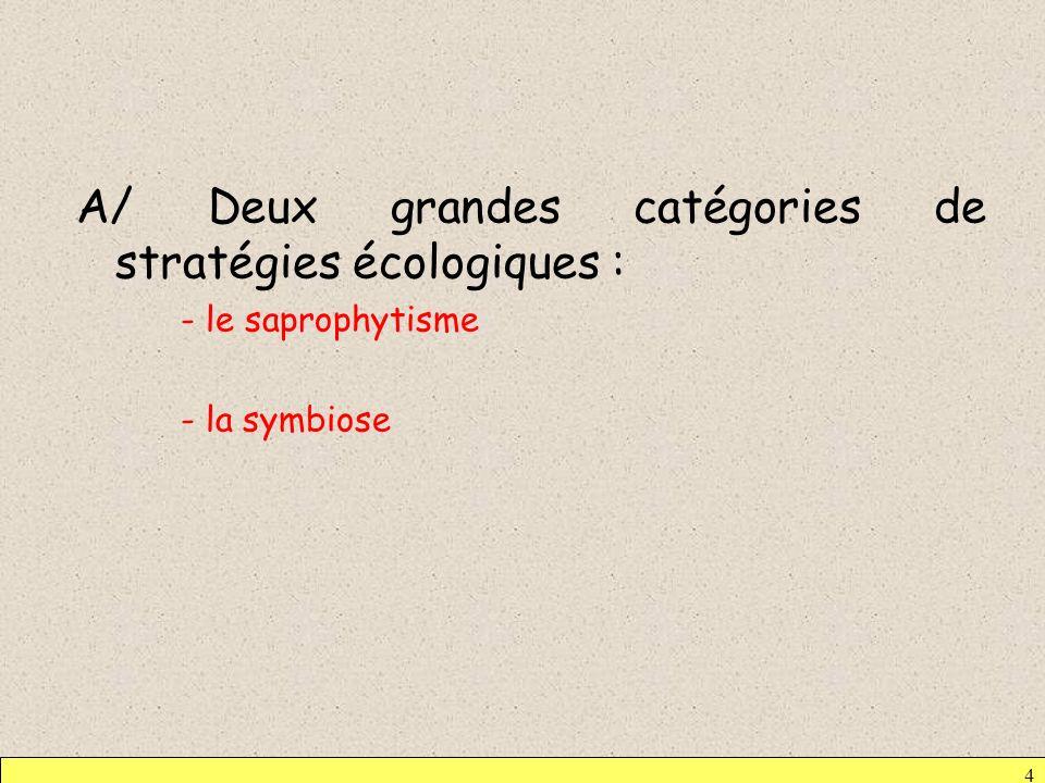 A/ Deux grandes catégories de stratégies écologiques : - le saprophytisme - la symbiose 4