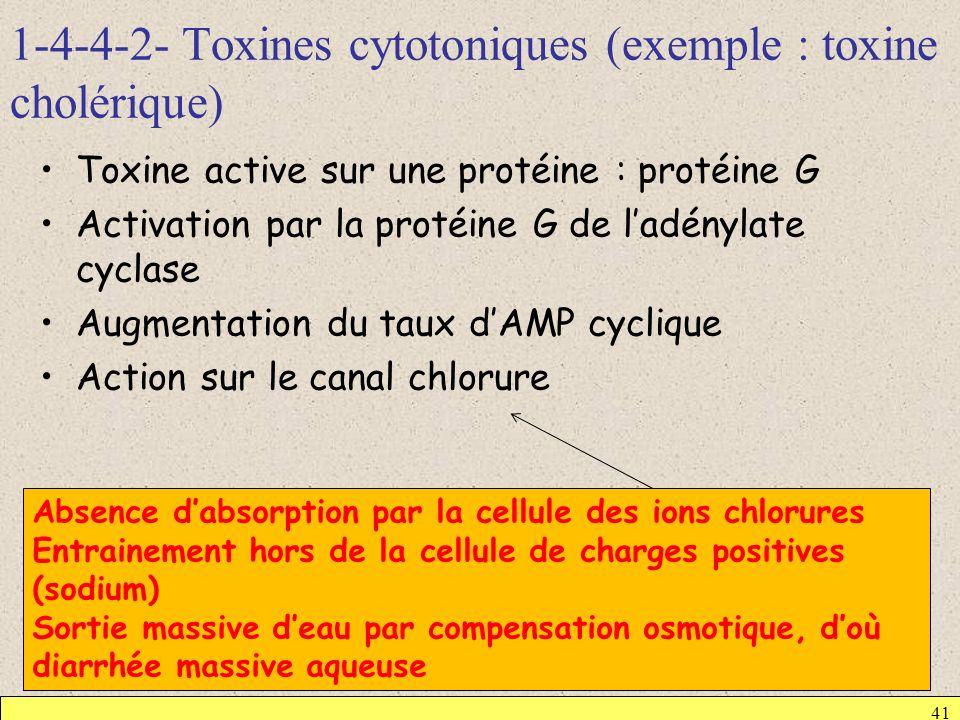 1-4-4-2- Toxines cytotoniques (exemple : toxine cholérique) 41 Toxine active sur une protéine : protéine G Activation par la protéine G de ladénylate
