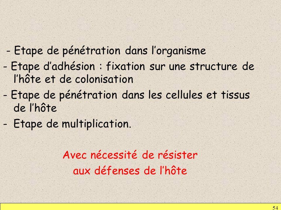 54 - Etape de pénétration dans lorganisme - Etape dadhésion : fixation sur une structure de lhôte et de colonisation - Etape de pénétration dans les c