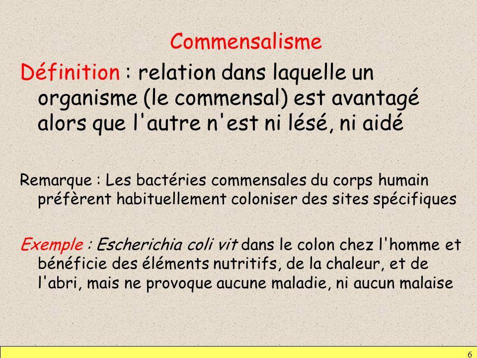 6 Commensalisme Définition : relation dans laquelle un organisme (le commensal) est avantagé alors que l'autre n'est ni lésé, ni aidé Remarque : Les b
