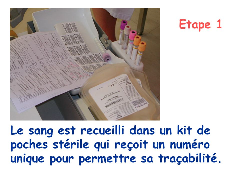 Le sang est recueilli dans un kit de poches stérile qui reçoit un numéro unique pour permettre sa traçabilité. Etape 1