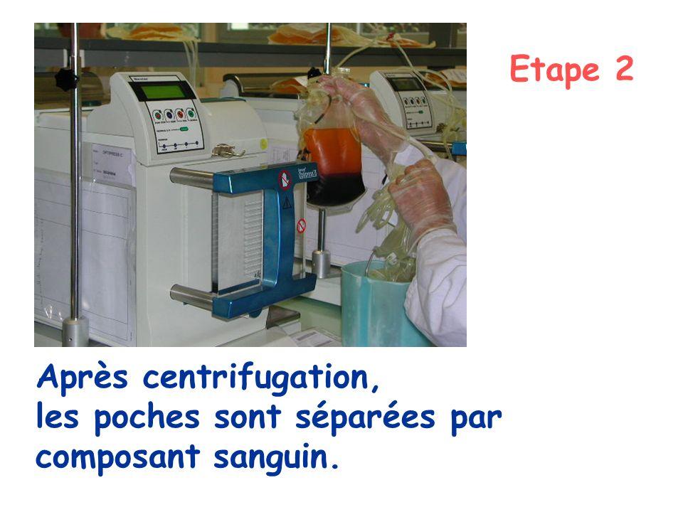 Après centrifugation, les poches sont séparées par composant sanguin. Etape 2