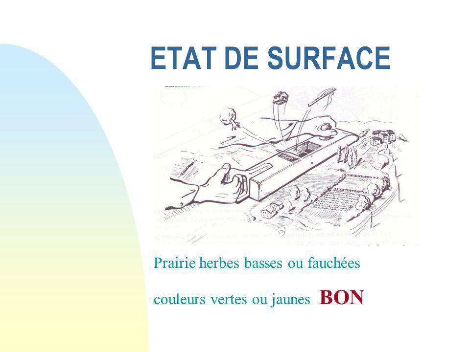 ETAT DE SURFACE Cultures basses et labours couleurs marrons et verts BON