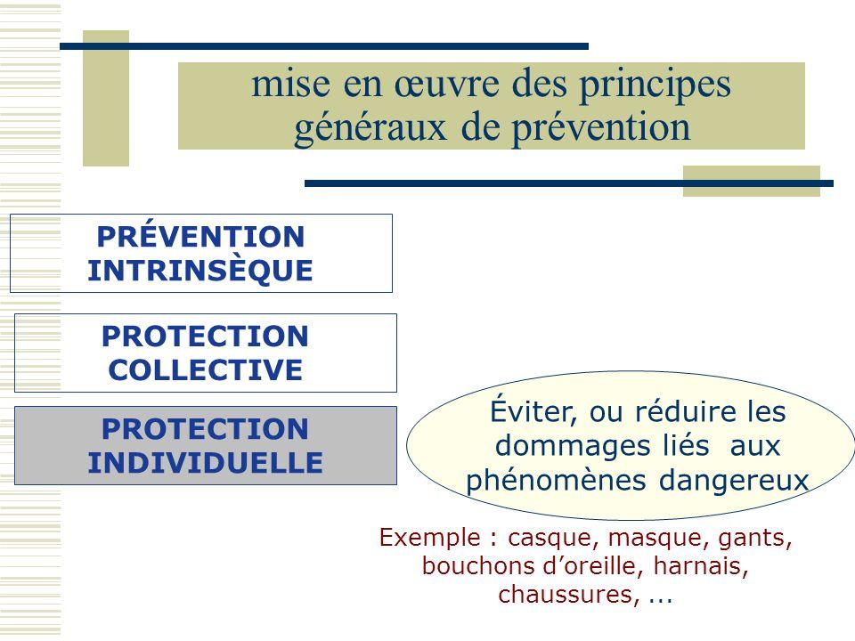 PRÉVENTION INTRINSÈQUE Éviter, ou réduire les dommages liés aux phénomènes dangereux Exemple : casque, masque, gants, bouchons doreille, harnais, chau