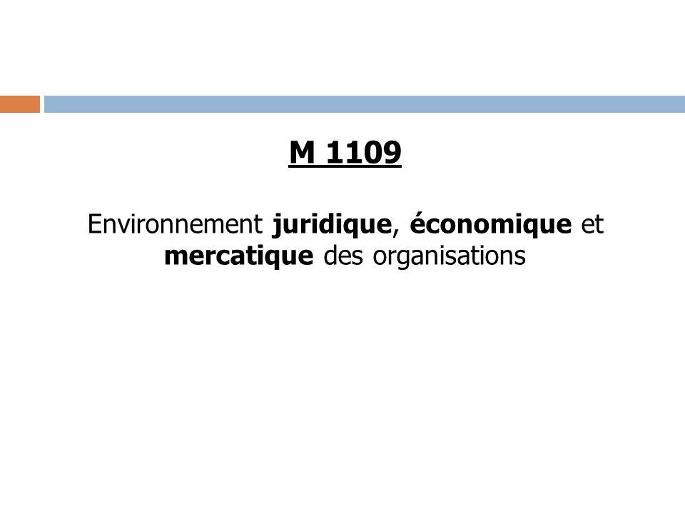 M 1109 Environnement juridique, économique et mercatique des organisations
