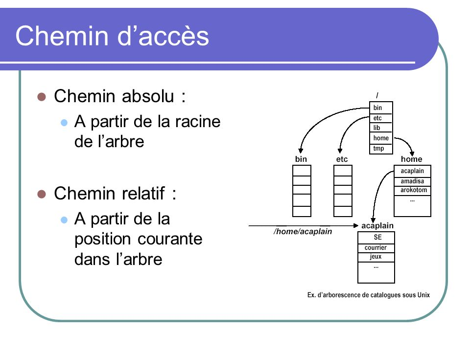 Chemin daccès Chemin absolu : A partir de la racine de larbre Chemin relatif : A partir de la position courante dans larbre
