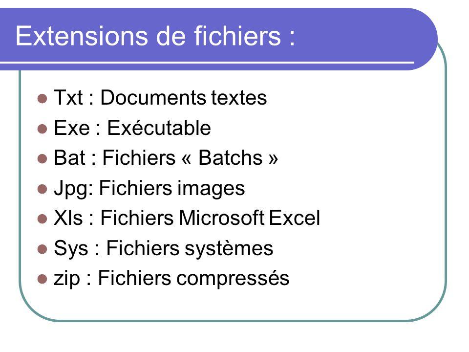 Extensions de fichiers : Txt : Documents textes Exe : Exécutable Bat : Fichiers « Batchs » Jpg: Fichiers images Xls : Fichiers Microsoft Excel Sys : F