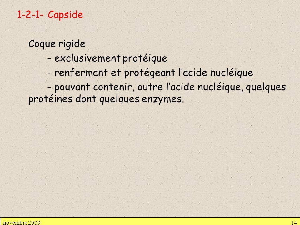 1-2-1- Capside Coque rigide - exclusivement protéique - renfermant et protégeant lacide nucléique - pouvant contenir, outre lacide nucléique, quelques