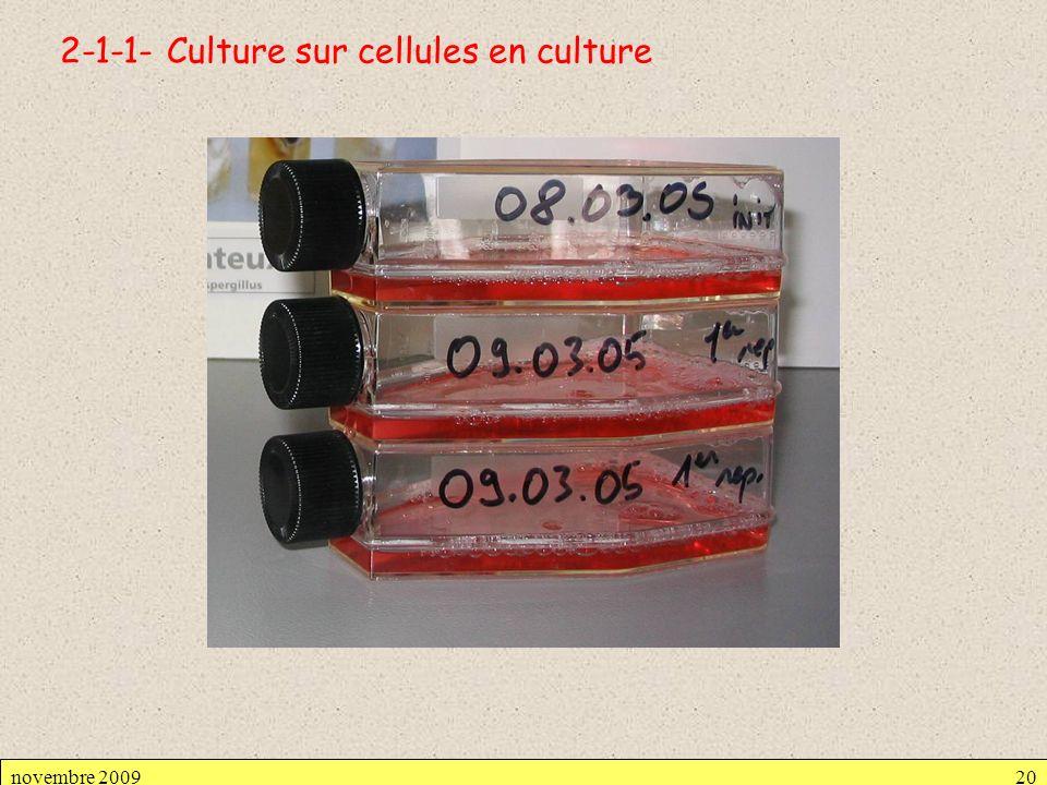 2-1-1- Culture sur cellules en culture novembre 200920