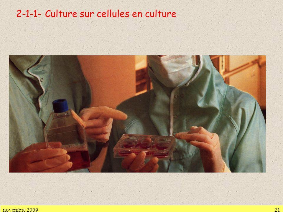 2-1-1- Culture sur cellules en culture novembre 200921