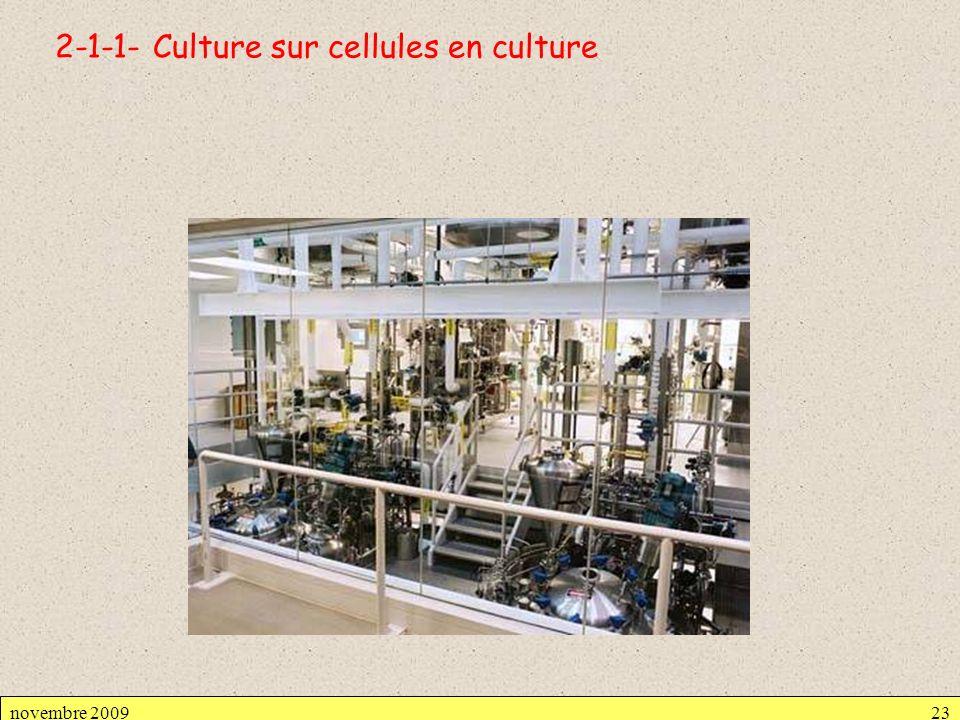 2-1-1- Culture sur cellules en culture novembre 200923