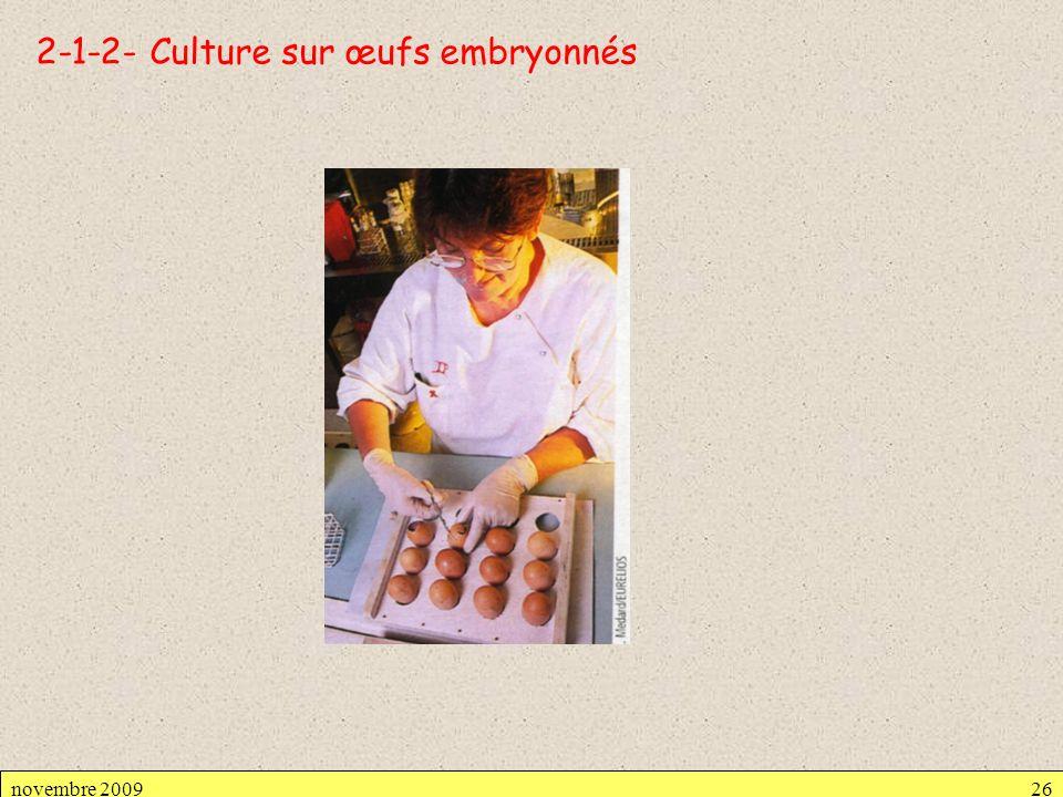 2-1-2- Culture sur œufs embryonnés novembre 200926