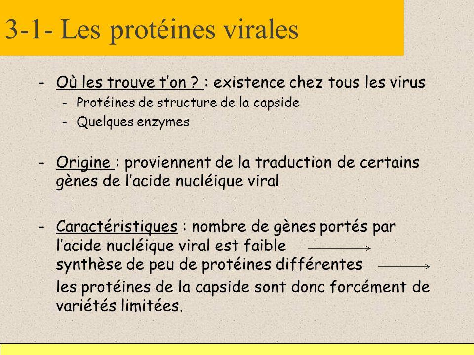 3-1- Les protéines virales -Où les trouve ton ? : existence chez tous les virus -Protéines de structure de la capside -Quelques enzymes -Origine : pro