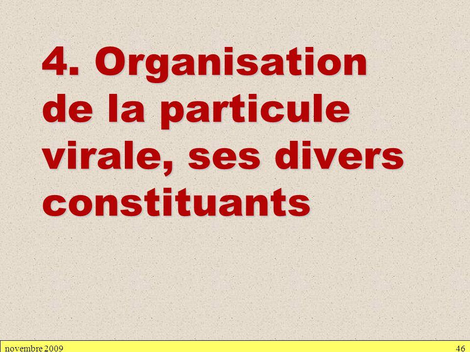 novembre 200946 4. Organisation de la particule virale, ses divers constituants