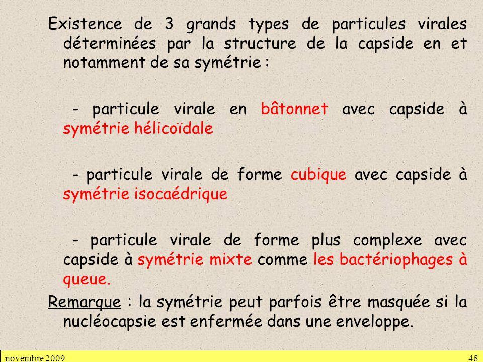Existence de 3 grands types de particules virales déterminées par la structure de la capside en et notamment de sa symétrie : - particule virale en bâ