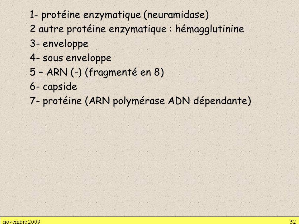 1- protéine enzymatique (neuramidase) 2 autre protéine enzymatique : hémagglutinine 3- enveloppe 4- sous enveloppe 5 – ARN (-) (fragmenté en 8) 6- cap