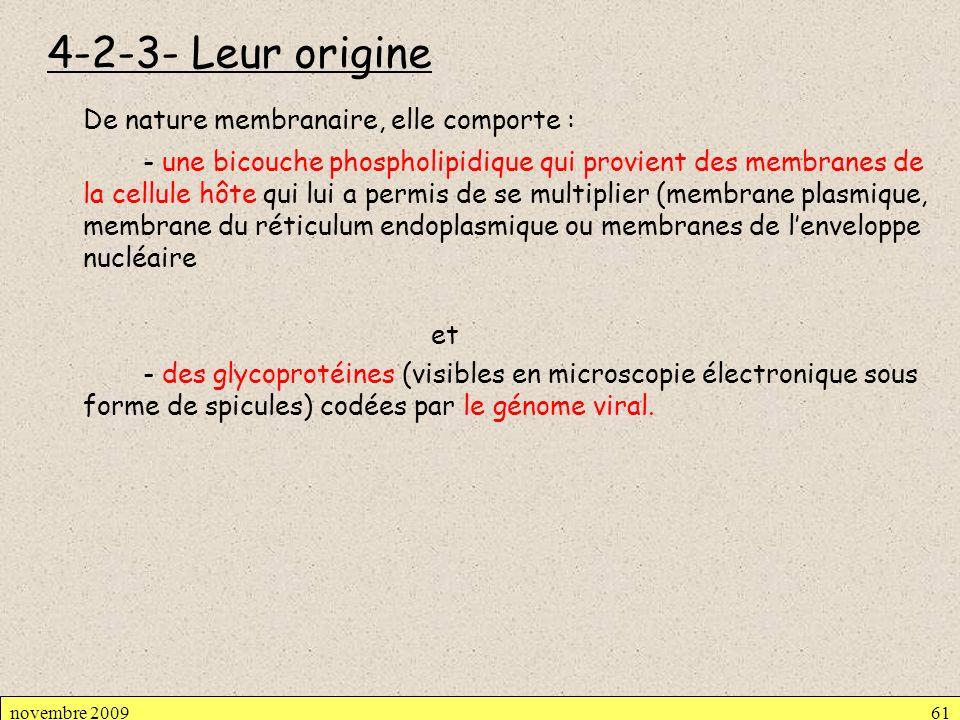 4-2-3- Leur origine De nature membranaire, elle comporte : - une bicouche phospholipidique qui provient des membranes de la cellule hôte qui lui a per