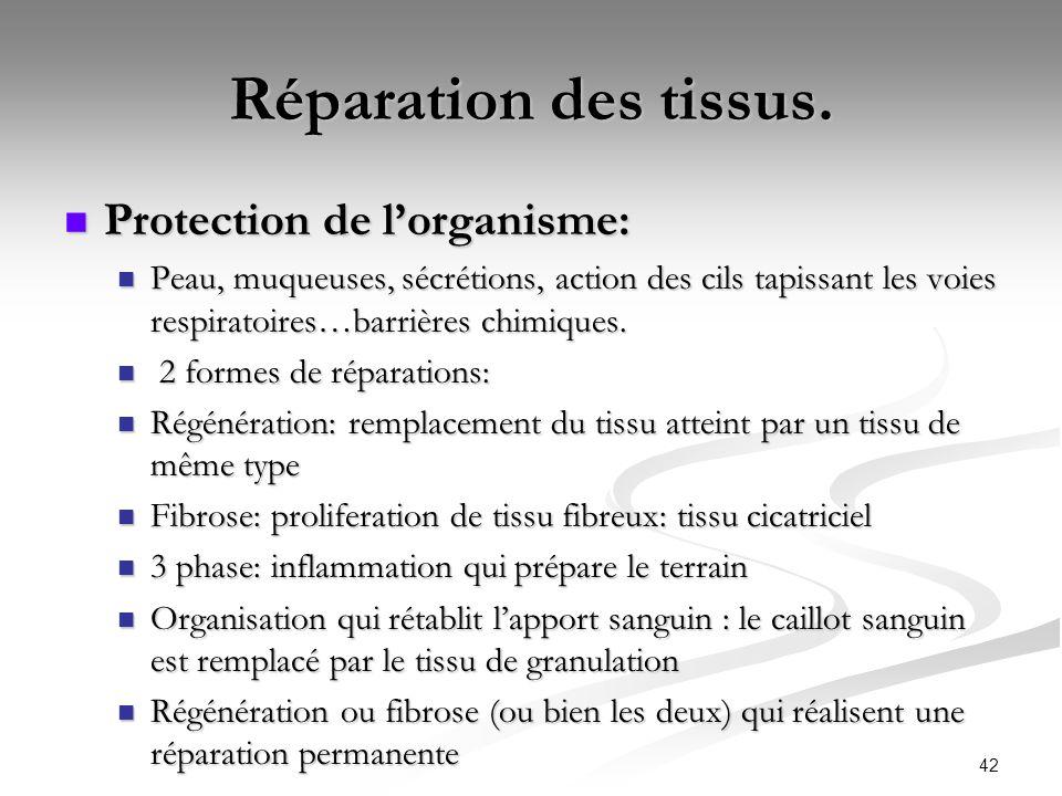 42 Réparation des tissus. Protection de lorganisme: Protection de lorganisme: Peau, muqueuses, sécrétions, action des cils tapissant les voies respira