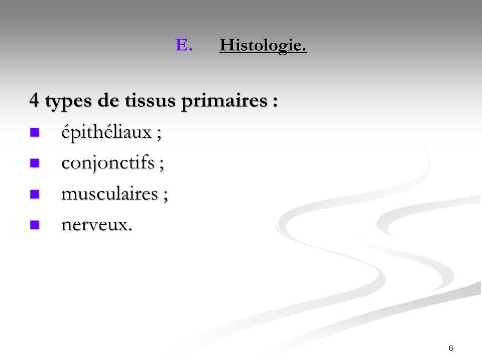6 E.Histologie. 4 types de tissus primaires : épithéliaux ; épithéliaux ; conjonctifs ; conjonctifs ; musculaires ; musculaires ; nerveux. nerveux.