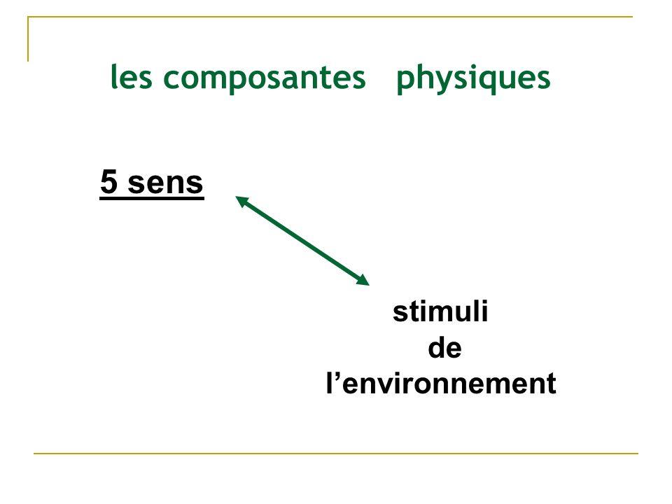 les composantes physiques 5 sens stimuli de lenvironnement