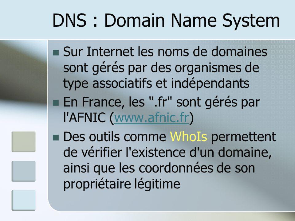 Sur Internet les noms de domaines sont gérés par des organismes de type associatifs et indépendants En France, les