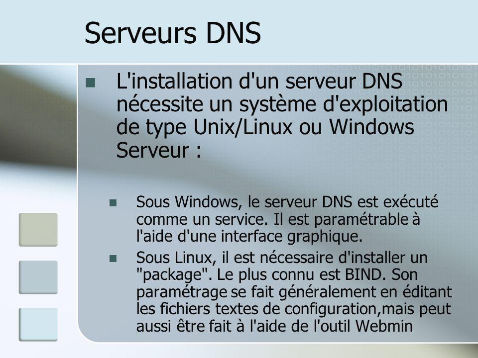 Serveurs DNS L'installation d'un serveur DNS nécessite un système d'exploitation de type Unix/Linux ou Windows Serveur : Sous Windows, le serveur DNS