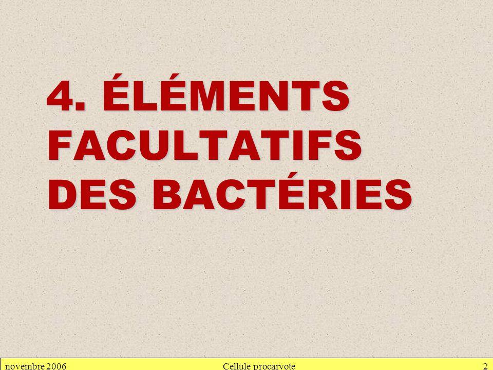 novembre 2006Cellule procaryote2 4. ÉLÉMENTS FACULTATIFS DES BACTÉRIES