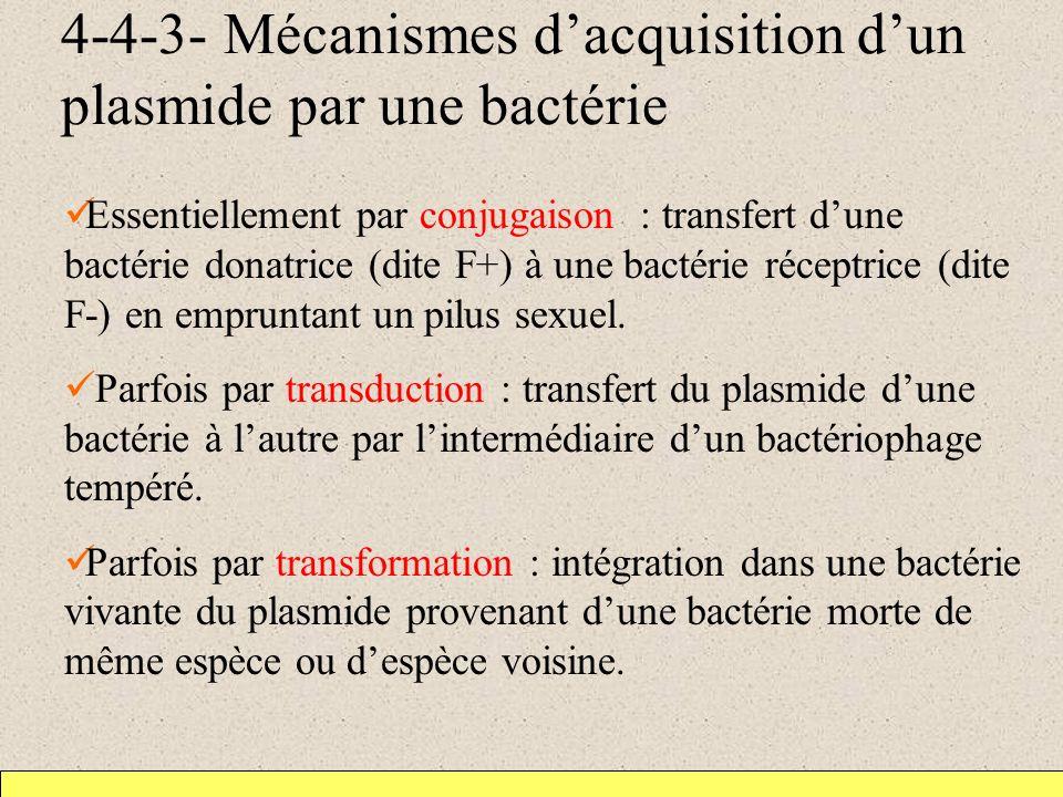 4-4-3- Mécanismes dacquisition dun plasmide par une bactérie Essentiellement par conjugaison : transfert dune bactérie donatrice (dite F+) à une bactérie réceptrice (dite F-) en empruntant un pilus sexuel.