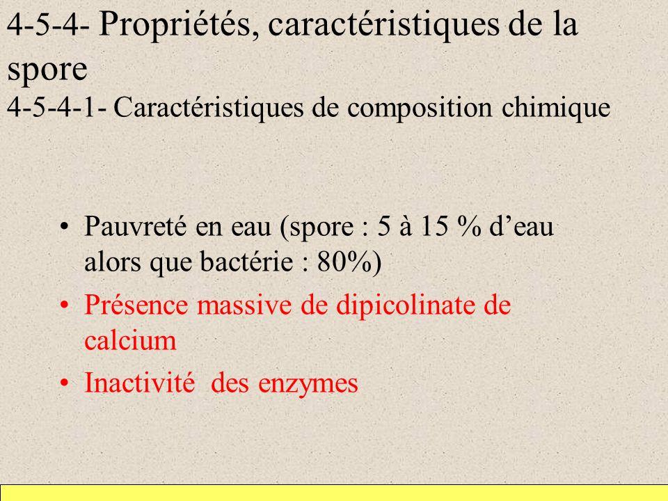 4-5-4- Propriétés, caractéristiques de la spore 4-5-4-1- Caractéristiques de composition chimique Pauvreté en eau (spore : 5 à 15 % deau alors que bactérie : 80%) Présence massive de dipicolinate de calcium Inactivité des enzymes