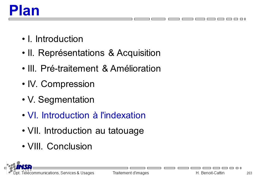 Dpt. Télécommunications, Services & Usages Traitement d'images H. Benoit-Cattin 203 I. Introduction II. Représentations & Acquisition III. Pré-traitem