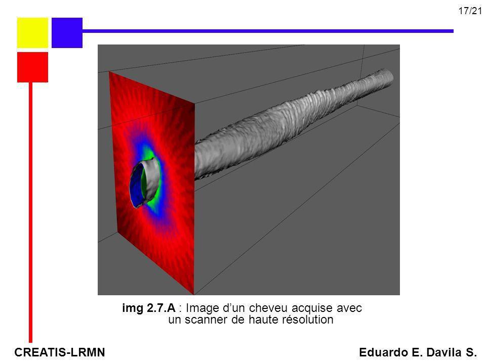 img 2.7.A : Image dun cheveu acquise avec un scanner de haute résolution CREATIS-LRMN Eduardo E. Davila S. 17/21