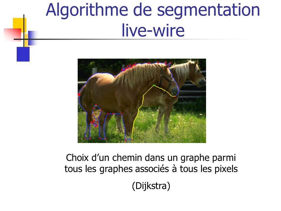Algorithme de segmentation live-wire Choix dun chemin dans un graphe parmi tous les graphes associés à tous les pixels (Dijkstra)