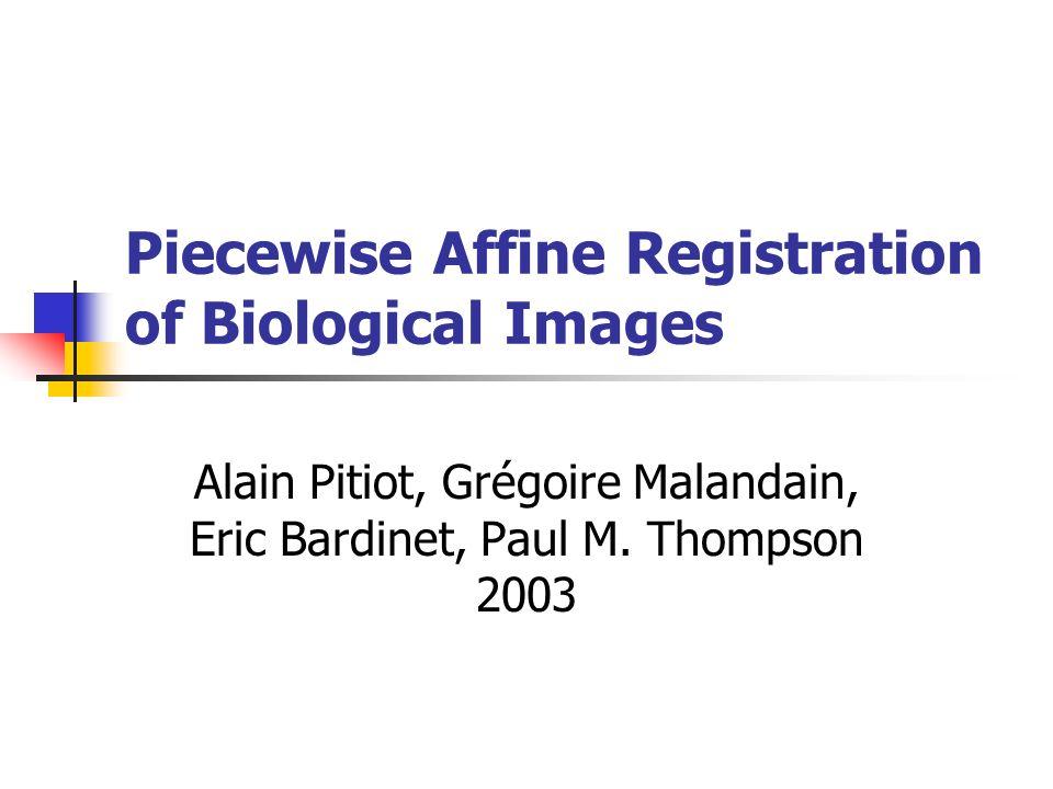 Piecewise Affine Registration of Biological Images Alain Pitiot, Grégoire Malandain, Eric Bardinet, Paul M. Thompson 2003