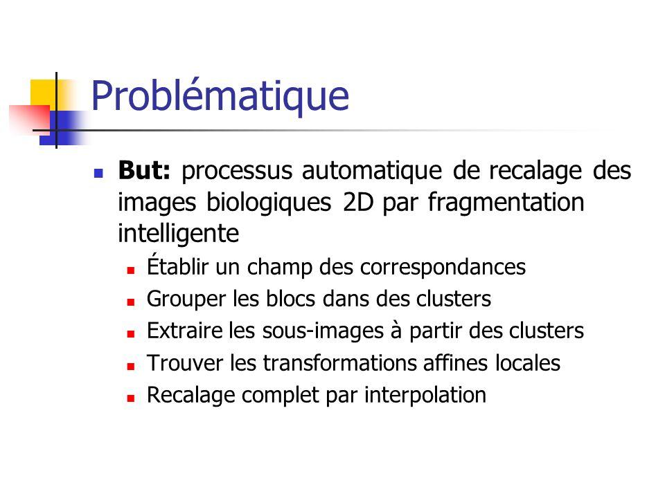 Problématique But: processus automatique de recalage des images biologiques 2D par fragmentation intelligente Établir un champ des correspondances Gro