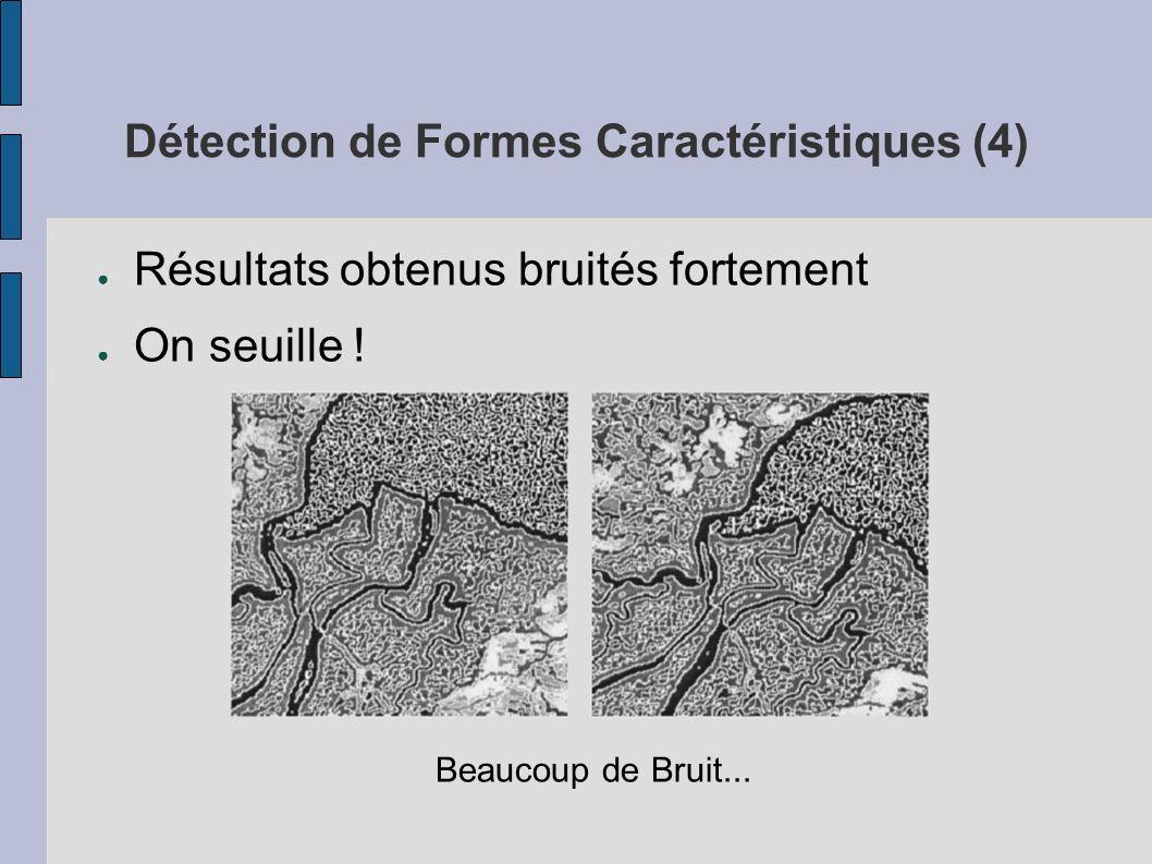 Détection de Formes Caractéristiques (4) Résultats obtenus bruités fortement On seuille ! Beaucoup de Bruit...