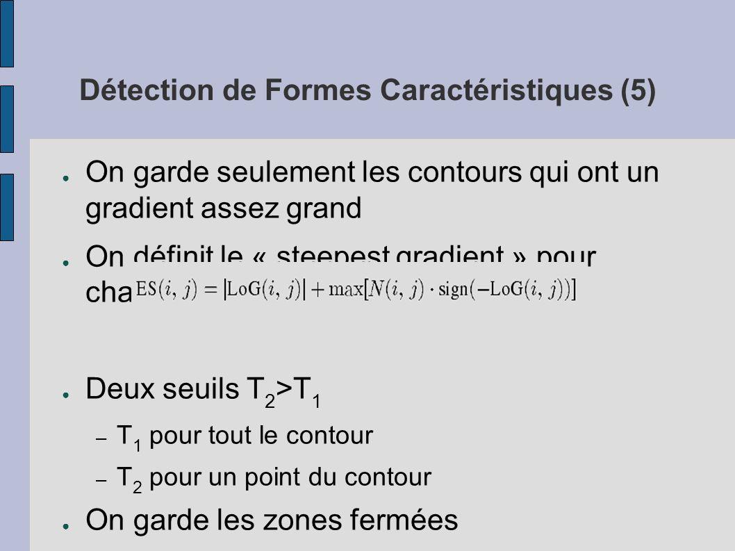 Détection de Formes Caractéristiques (5) On garde seulement les contours qui ont un gradient assez grand On définit le « steepest gradient » pour chaq