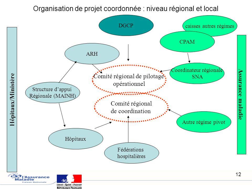 12 Organisation de projet coordonnée : niveau régional et local Hôpitaux/Ministère Assurance maladie ARH Hôpitaux Coordinateur régionale SNA Structure