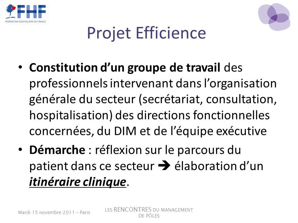 Projet Efficience Constitution dun groupe de travail des professionnels intervenant dans lorganisation générale du secteur (secrétariat, consultation,