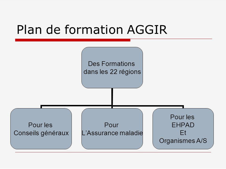 Plan de formation AGGIR Des Formations dans les 22 régions Pour les Conseils généraux Pour LAssurance maladie Pour les EHPAD Et Organismes A/S