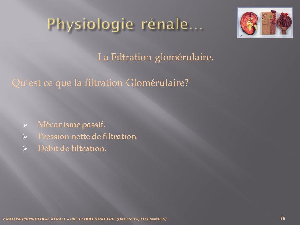 ANATOMOPHYSIOLOGIE RÉNALE – DR CLAUDEPIERRE ERIC (URGENCES, CH LANNION) 14 La Filtration glomérulaire. Quest ce que la filtration Glomérulaire? Mécani