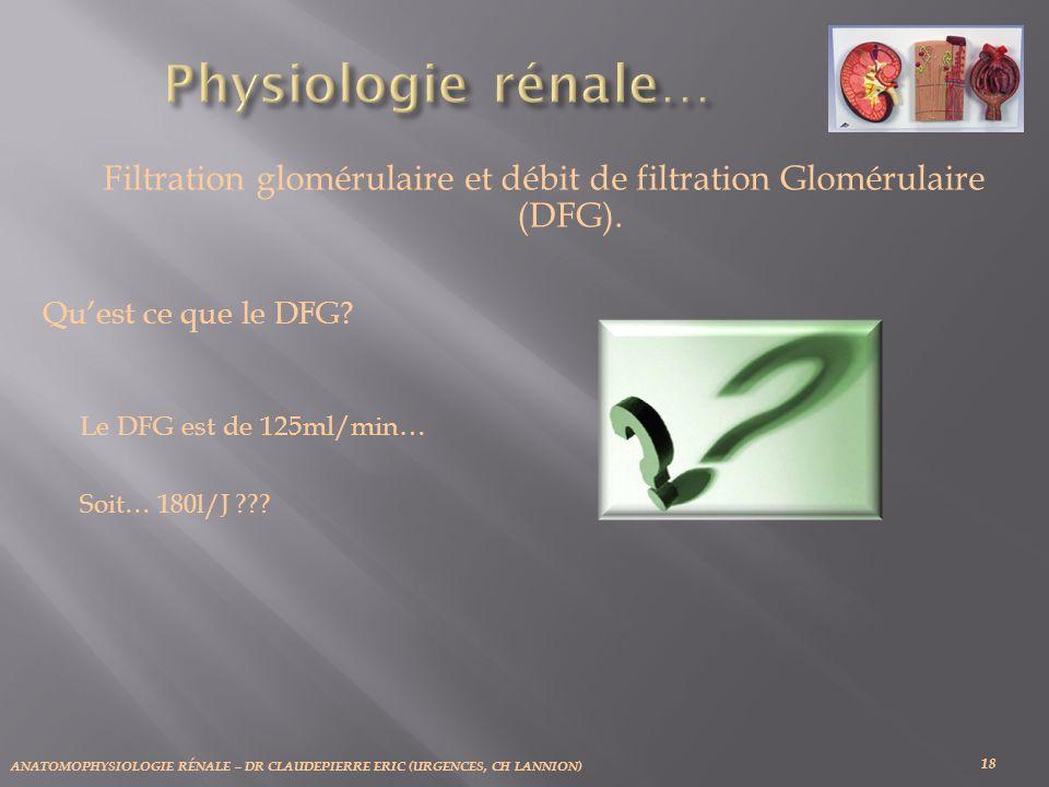ANATOMOPHYSIOLOGIE RÉNALE – DR CLAUDEPIERRE ERIC (URGENCES, CH LANNION) 18 Filtration glomérulaire et débit de filtration Glomérulaire (DFG). Quest ce