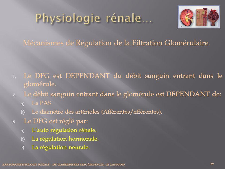 ANATOMOPHYSIOLOGIE RÉNALE – DR CLAUDEPIERRE ERIC (URGENCES, CH LANNION) 19 Mécanismes de Régulation de la Filtration Glomérulaire. 1. Le DFG est DEPEN
